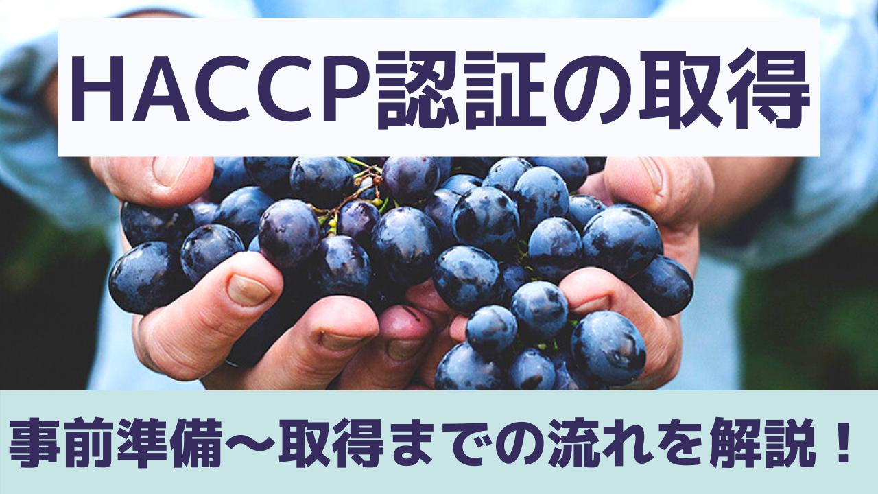 d0919084449990e0113e1190bab4a656 - HACCP認証の取得には何をすればよい?具体的な流れを紹介