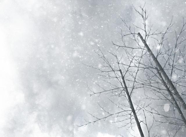 寒冷地仕様の業務用エアコンの特徴と活用するメリット